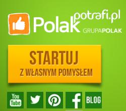 Co Polak Potrafi? Zapotrzebowanie na technologiczne projekty na polakpotrafi.pl, Crowdfunding